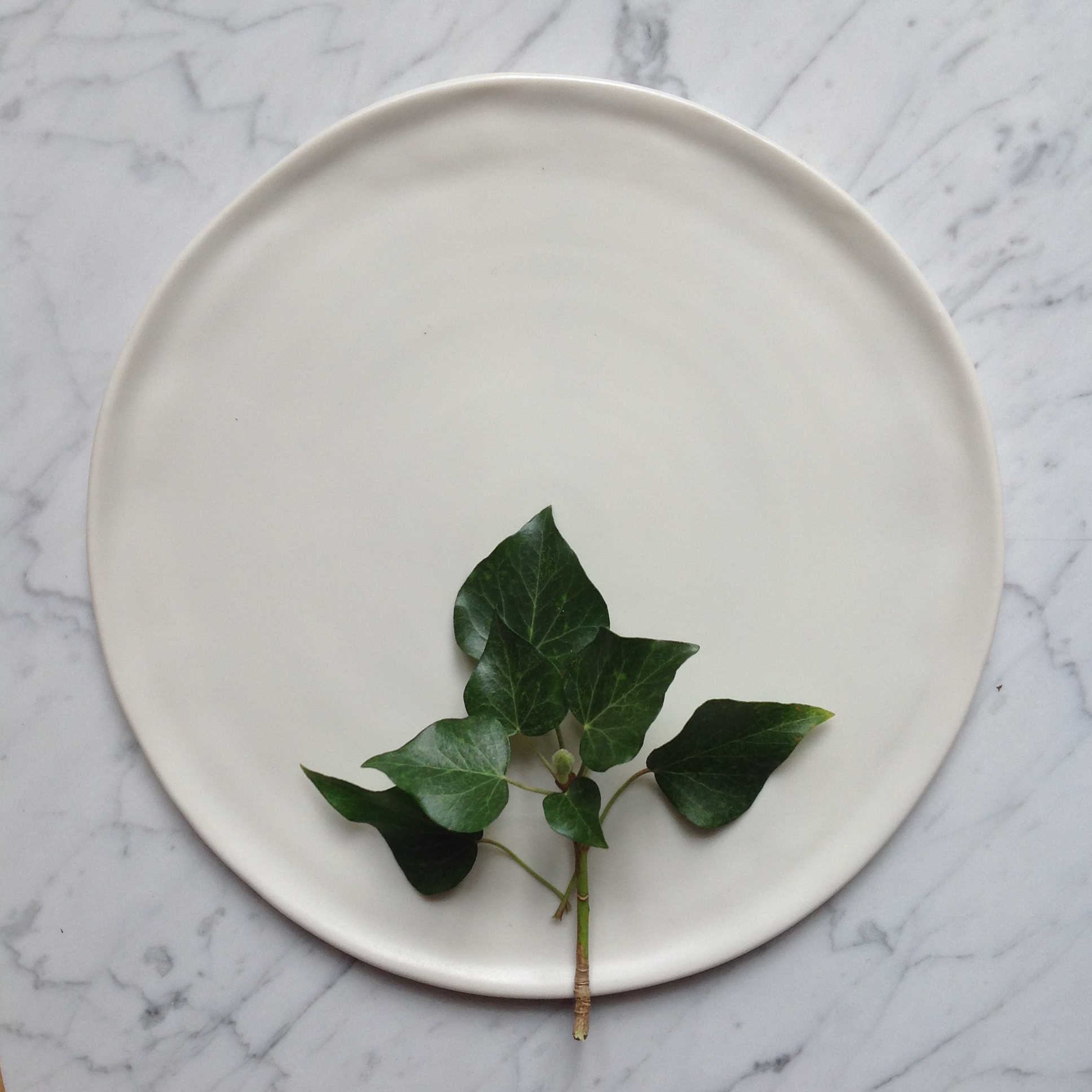 tableware- dinnerware Matt porcelain plate- dinnerware- tableware- handmade- hand thrown- by linda bloomfield & Handmade matt white plate | Linda Bloomfield