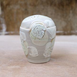lichen lidded jar
