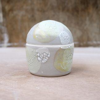 lichen lidded porcelain box