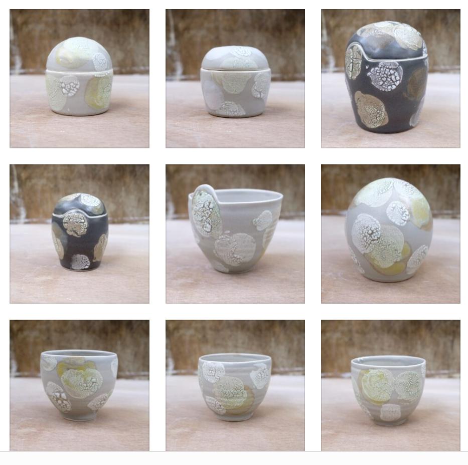 Linda Bloomfield lichen pots